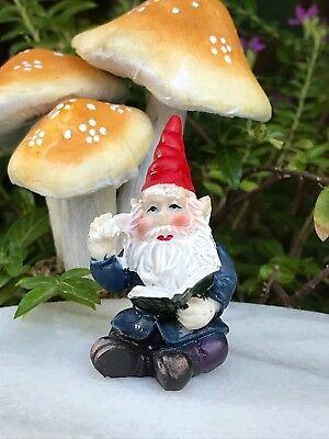 "Miniature Dollhouse FAIRY GARDEN  Accessories ~ TINY 1¼/"" Tall Gnome w// Book"