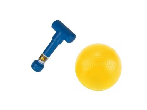 CANNONBALL Fastpitch Softball Pitching Training Aids WRIST SNAPPER