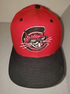 83cae97ab2c51 Vtg Defunct Charleston Alley Cats Fitted 6 7 8 MILB Baseball Hat Cap ...