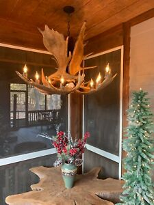 """REAL ANTLER MOOSE CHANDELIER BY CDN 9 LAMPS 31""""x23"""" E07, Rustic Deer Lights"""