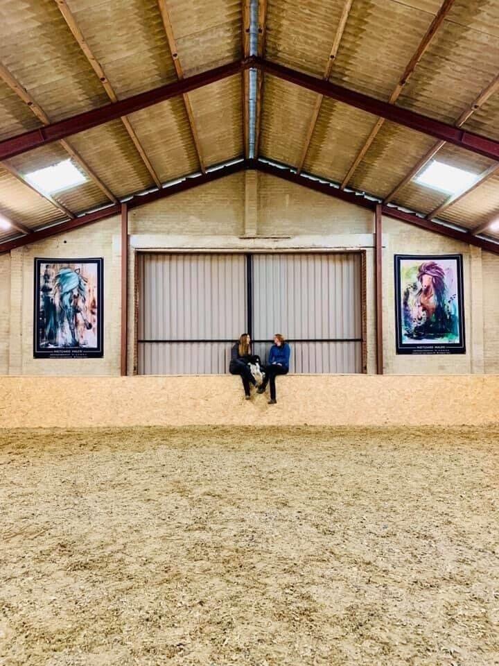 Opstaldning af islandske heste