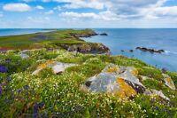 Scandinavia Coast Landscape Poster Print 24x36 Hi Res