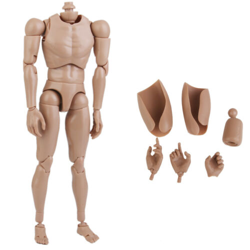 1//6 Male Figure Body 12/'/' Muscular Action Doll Fit For Hot Toys Head Sculpt New