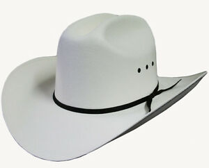 Western Cowboy Straw Hat Like As Worn in Tv Programme Dallas Stetson ... 5e48e936413