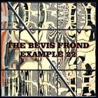 Example 22 von The Bevis Frond (2015)