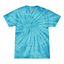 Tie-Dye-Tonal-T-Shirts-Adult-Sizes-S-5XL-Unisex-100-Cotton-Colortone-Gildan thumbnail 11