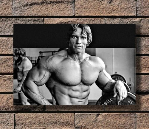 W779 Hot Arnold Schwarzenegger Bodybuilding Fitness Print 24x36 in Silk Poster