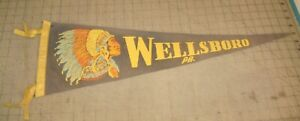 """Vintage WELLSBORO, PA 26.5"""" 4-Tassel Faded Green Pennant - with Chief Logo"""