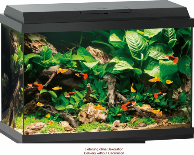 i colori possono essere diversi e si combinano Scratch-barile con sisal natura e peluche 100 cm con le grotte di colore Grigio viola modello 9927