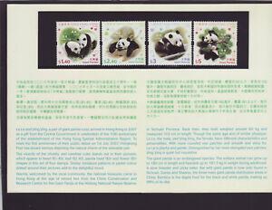 Hong-Kong-2008-MNH-Giant-Pandas-presentation-pack-with-set-of-4-stamps