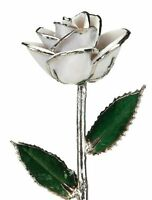 Snow White Laquered Platinum Dipped Long Stem Genuine Rose In Red Gift Box, New, on sale