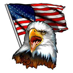 Sprinter Rv For Sale >> Eagle USA American Flag Decal for RV - Trailer Decal Sticker - 2A Pride | eBay