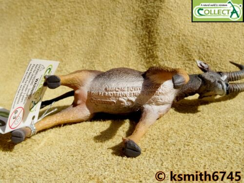 COLLECTA Antilope solido Donna plastic toy Wild Zoo Animale NUOVO