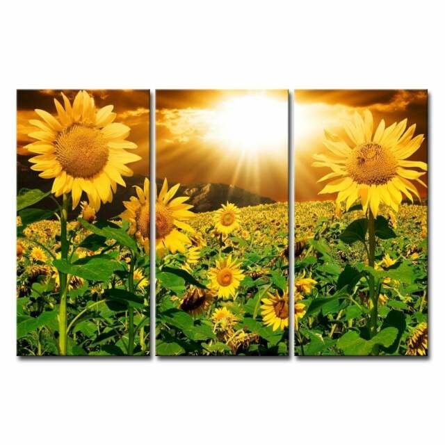 Canvas Print Wall Art Painting for Home Decor Bright Sunflower ...