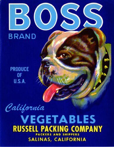 Salinas Boss Bulldog Bull Dog Vegetable Crate Box Label Art Print