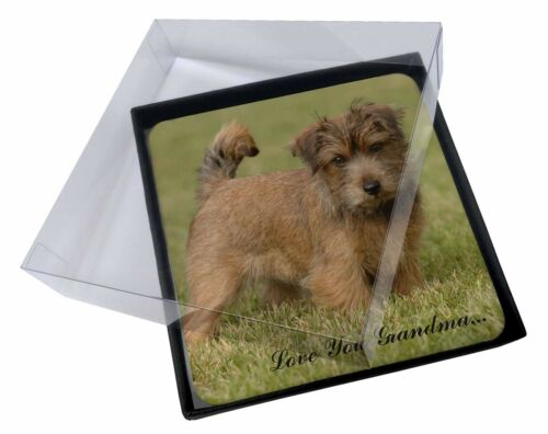 4x Norwich Norfolk Terrier 'Grandma' Picture Table Coasters Set in G, ADNT1lygC