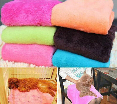 Superior Coral Soft Warm Pet Puppy Dog Cat Fleece Blanket Quilt Bed Cushion Pad