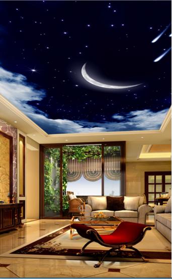 3D Meteor Moon 47 Ceiling WallPaper Murals Wall Print Decal AJ WALLPAPER US