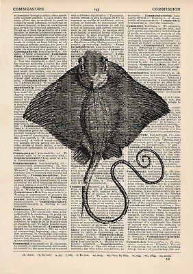 Stingray Dictionary Art Print Fishing Sea life Vintage Nautical