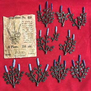 Delphinium n ° 039 de Grande-Bretagne d'époque, 1 tasse de Glassine, paquet de 8 plantes