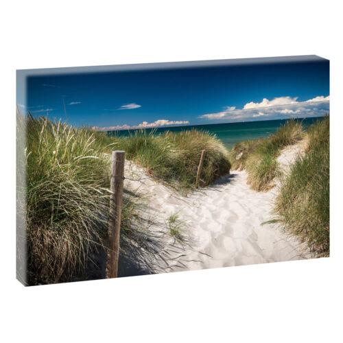 Weg zum Meer Strand Bild Wandbild Nordsee Fotoleinwand Poster 120 cm*80 cm 635