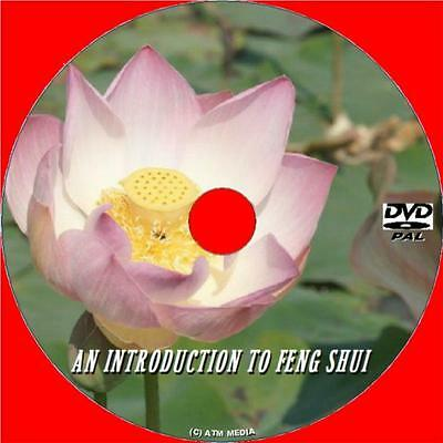 FENG SHUI FOR BEGINNERS INFORMATION GUIDE DVD STEP BY STEP EASY 2 FOLLOW NEW DVD