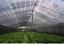 miniatuur 2 - 2x6 m 60% UV Black Shade Cloth Sunshade Fabric Greenhouse