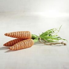 New Pier 1 Imports Easter Carrot Bundle Trio
