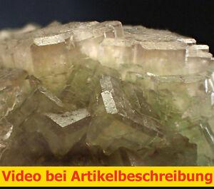 6687-Fluorite-Fluorite-CA-5-5-2-CM-Pit-Hermione-wolsendorf-area-Movie