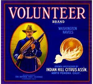 Pomona WWI Army Volunteer #3 Orange Citrus Fruit Crate Label Art Print