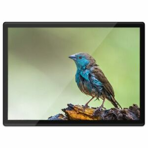 Beautiful Blue And Green Budgie Keyring Bird Keyring Gift #14566