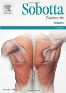 Sobotta-Flashcards-Muscles-Muscles-by-Lars-Brauer-9780702052583-Brand-New