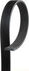 Serpentine Belt-Premium OE Micro-V Belt GATES fits 03-08 Toyota Corolla 1.8L-L4