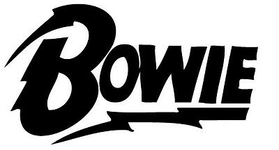 David Bowie Ziggy Stardust Vinilo Calcomanía Rayo Diamante Perros Aladdin  Sane | eBay