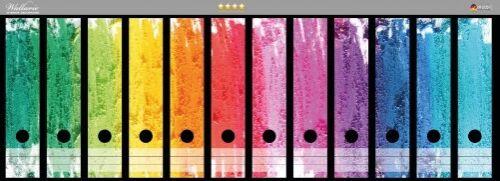 Wallario Ordnerrücken selbstklebend 12 breite Ordner Regenbogen Bunter Anstrich
