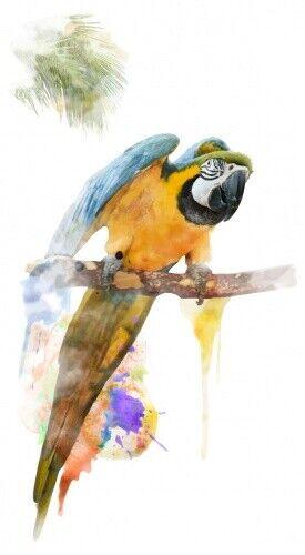 Wandtattoo Aquarelltiere Papagei mit Ast Wandsticker Dekoration