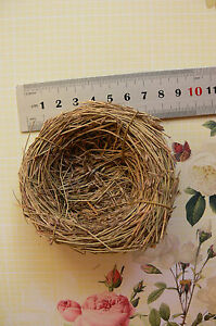 Grass-Birds-NEST-8-8-5cm-Across-x-2-7cm-Deep-Decorative-Use-Touch-of-Nature