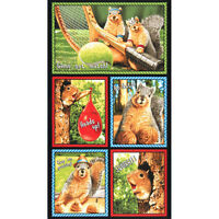 1 Robert Kaufman Squirrel Fabric Panel 23 1/2  X 44