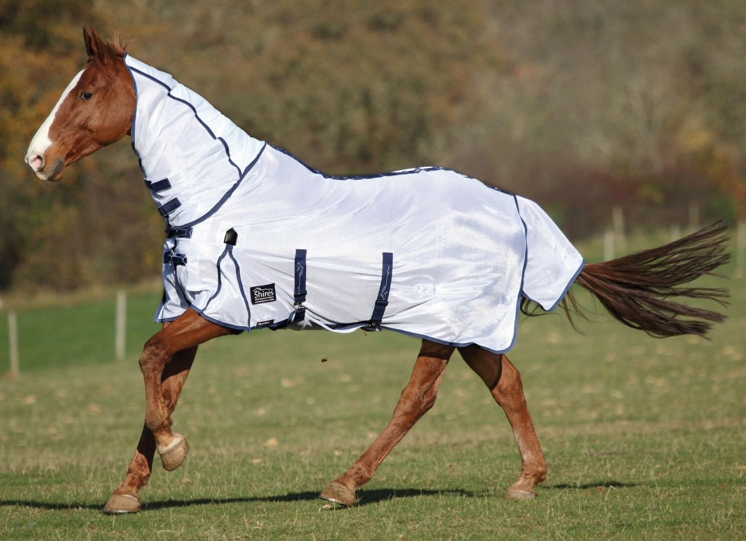 Shires Maxi Flow Combo Fly Rug inc Belly Flap, 4'0