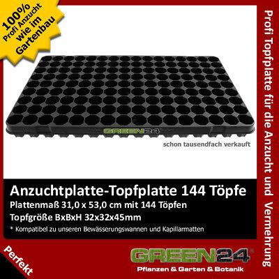 Topfplatte 60 Töpfe Anzucht-Töpfe Topf-Paletten Anzucht-Paletten Multitopf  !
