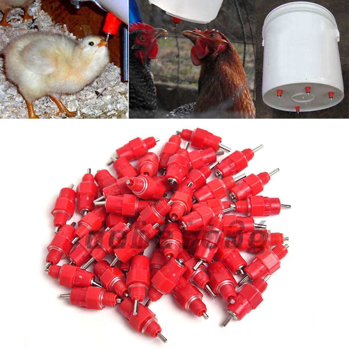 0080 Automatic Chicken Duck Screw In Poultry Water Nipple Drinker Garden New