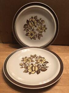 """Vintage SET (2) Brown Sierra Stoneware by MSI Japan 10.25"""" Dinner Plates, Floral"""