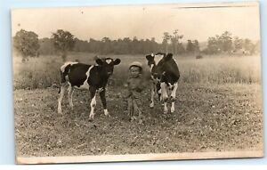 Strykersville-NY-1910-Vintage-Photo-Postcard-Farm-Boy-with-Cows-Calves-Field-B83