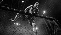UFC Fight Night - Dos Santos vs Struve, Theodorou vs Ferreira