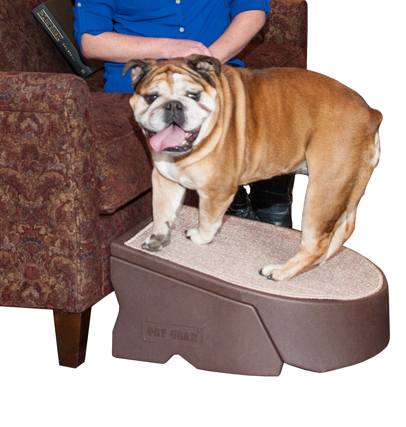Pet Gear Gear Gear One Step Stair Ramp for Cats and Dogs PG9700CH Indoor Outdoor NEW cbbc0e