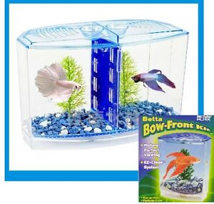Beta home siamese fighting fish aquarium hospital hank for Split fish tank