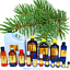 3ml-Essential-Oils-Many-Different-Oils-To-Choose-From-Buy-3-Get-1-Free thumbnail 40