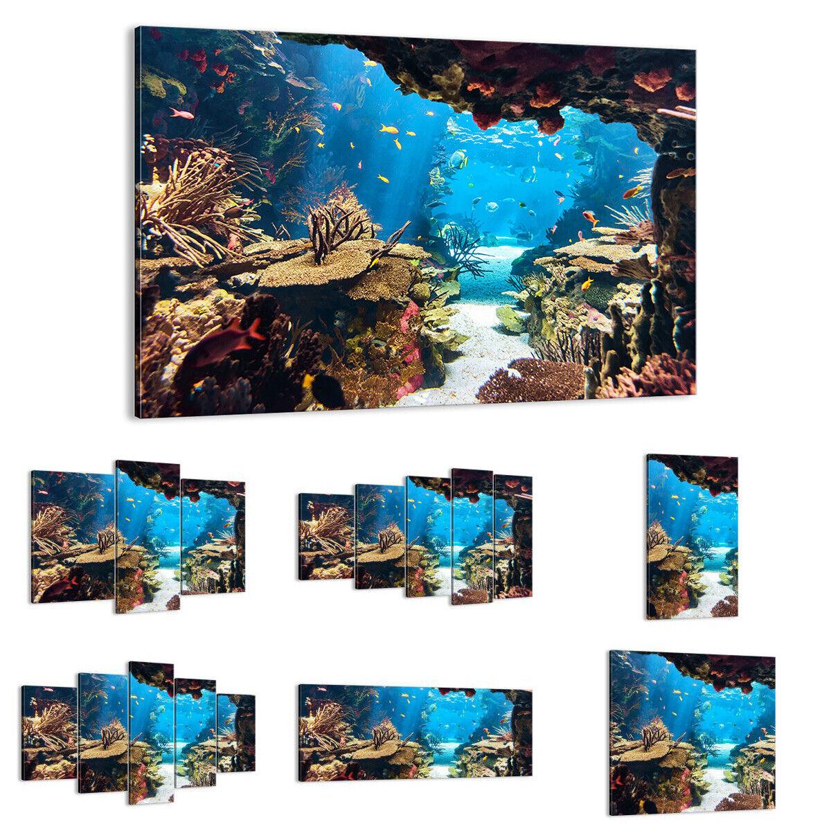 QUADRO MODERNO Stampa su tela Oceano Barriera corallina Pesci 2872 IT