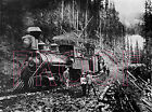Silverton Railroad Engine 100 the
