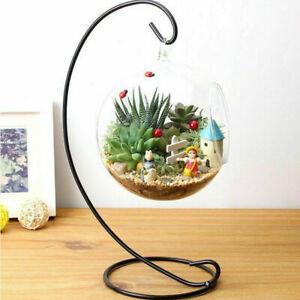Hanging-Glass-Flowers-Vase-Terrarium-Wedding-Conta-Decor-B7Z6